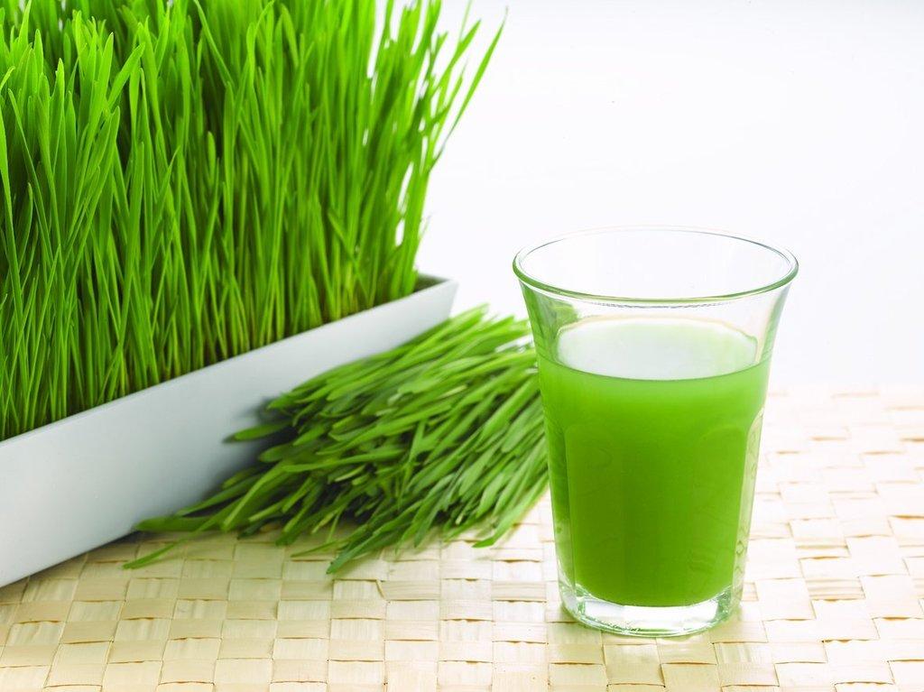 Best Greens Powder Ingredients
